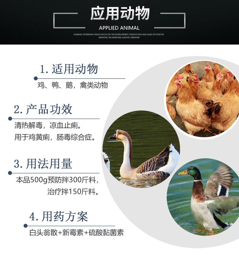 白头翁散500g-详情页-适用动物6.jpg