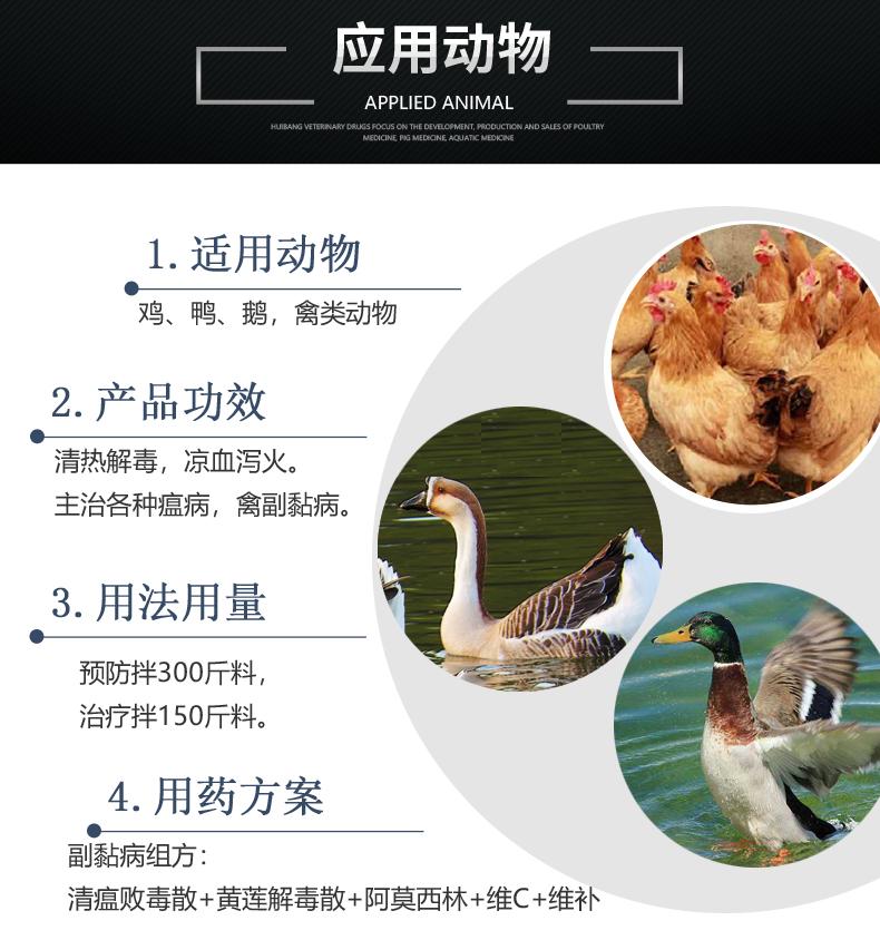 清瘟败毒散-产品详情页-适用动物.jpg