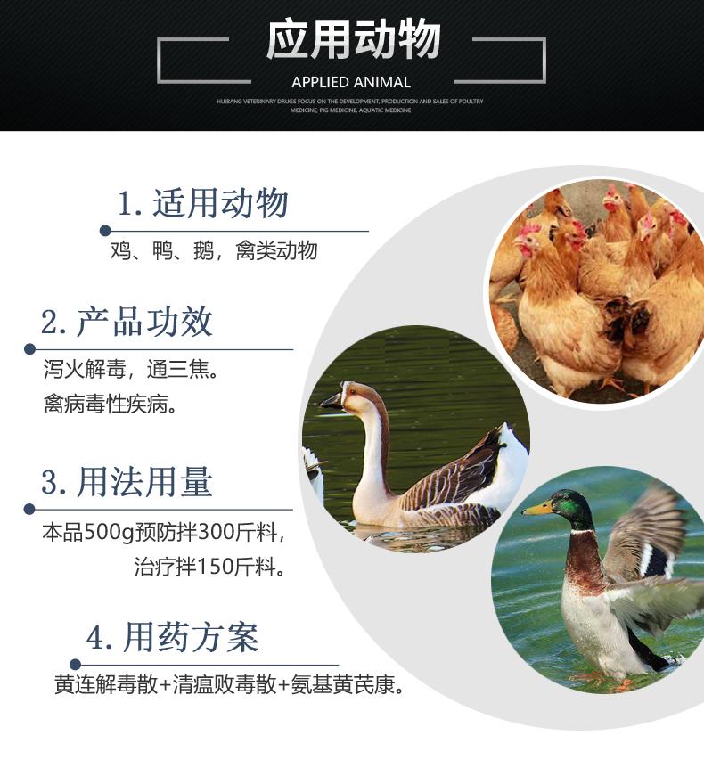 黄连解毒散1-产品详情页-适用动物.jpg