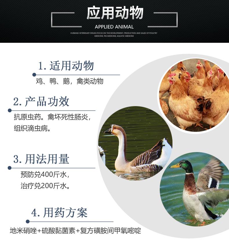 20%地美硝唑预混剂100g-产品详情页-适用动物.JPG