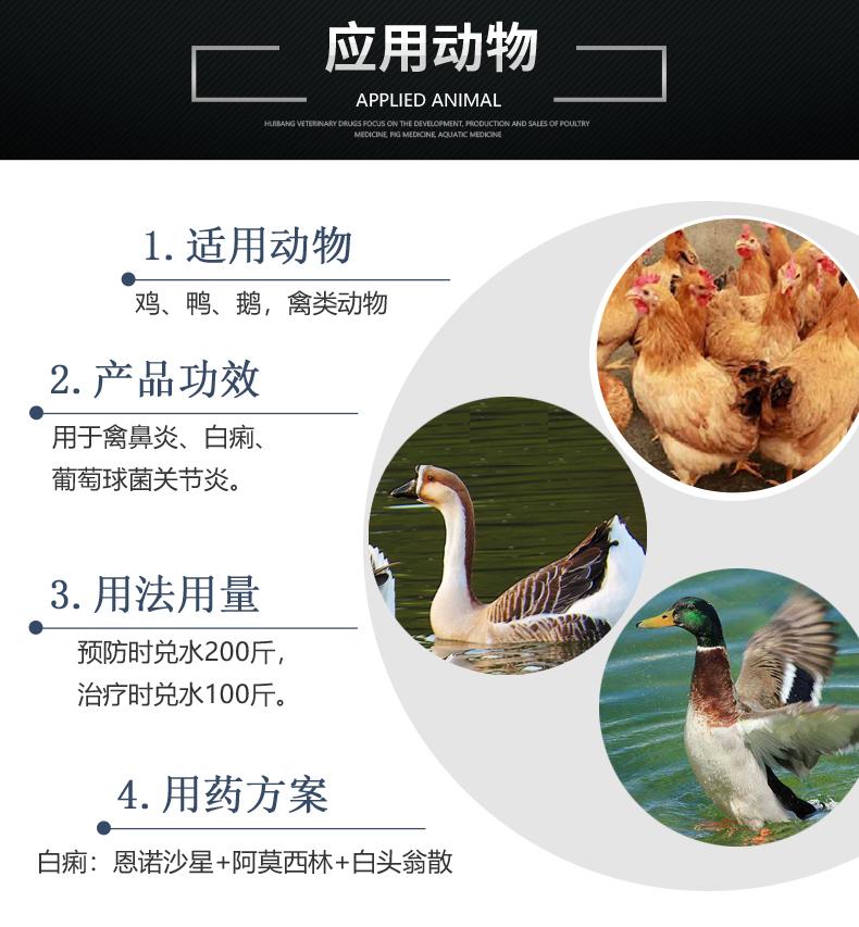 10%恩诺沙星可溶性粉100g-产品详情页-适用动物.JPG