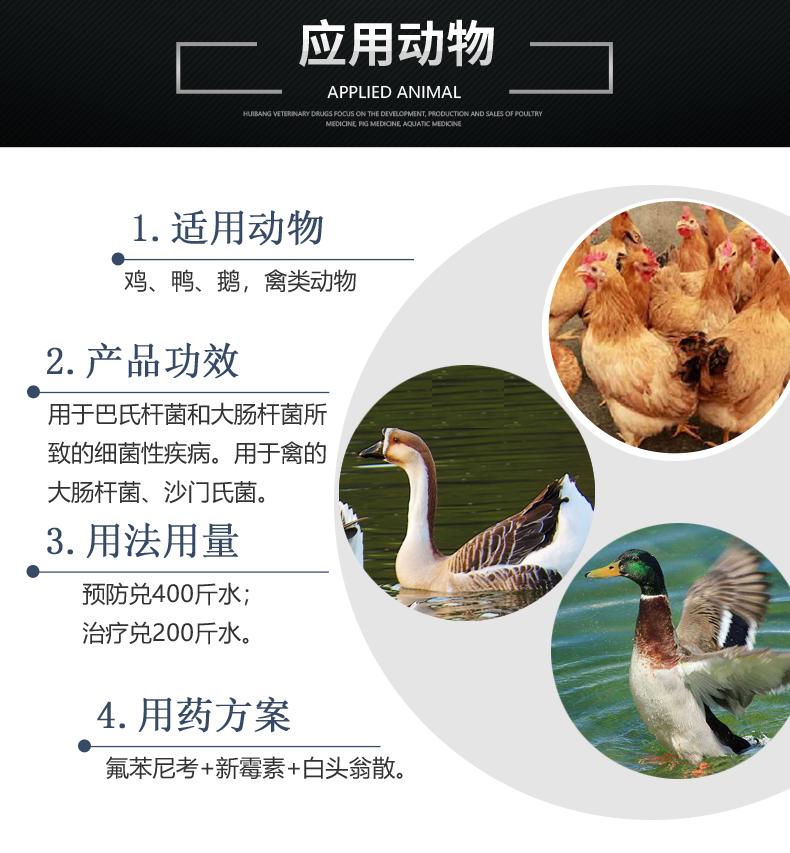 20%氟苯尼考100g-产品详情页-适用动物.JPG