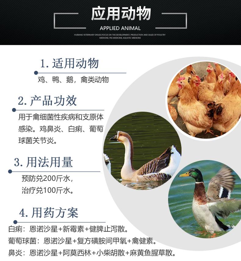 10%恩诺沙星 产品详情页-适用动物.jpg