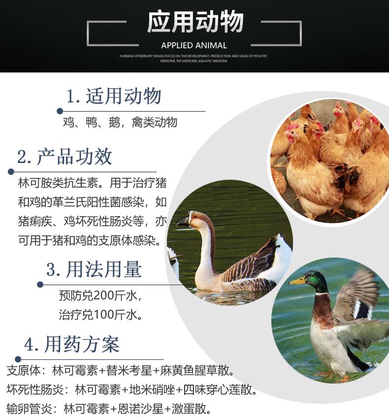 10%盐酸林可产品详情页-适用动物.jpg