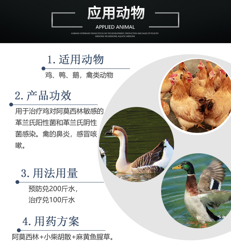 30%阿莫西林500g 产品详情页-适用动物.jpg