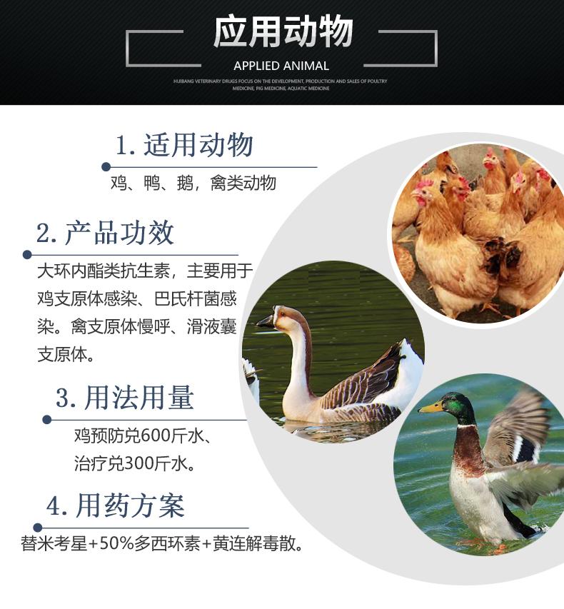 37.5替米考星产品详情页-适用动物.jpg