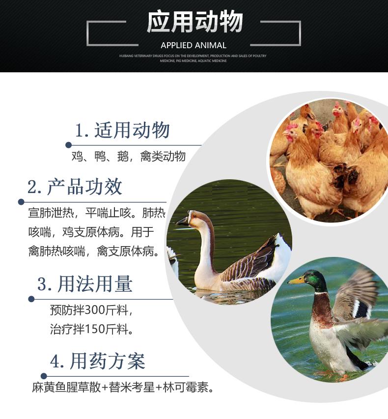 麻黄鱼腥草 产品详情页-适用动物.jpg