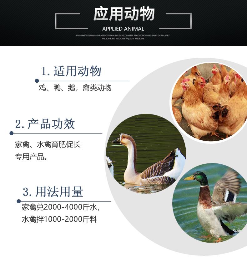 肥美乐-产品详情页-适用动物.jpg