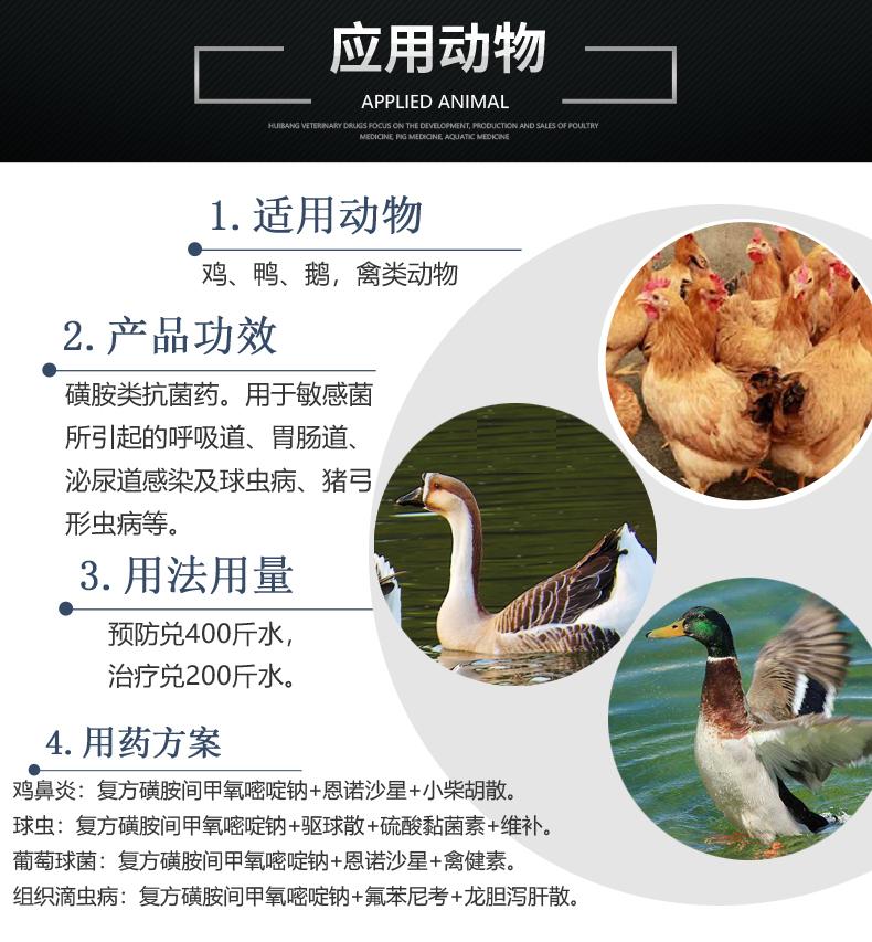 复方磺胺间甲氧嘧啶 产品详情页-适用动物.jpg