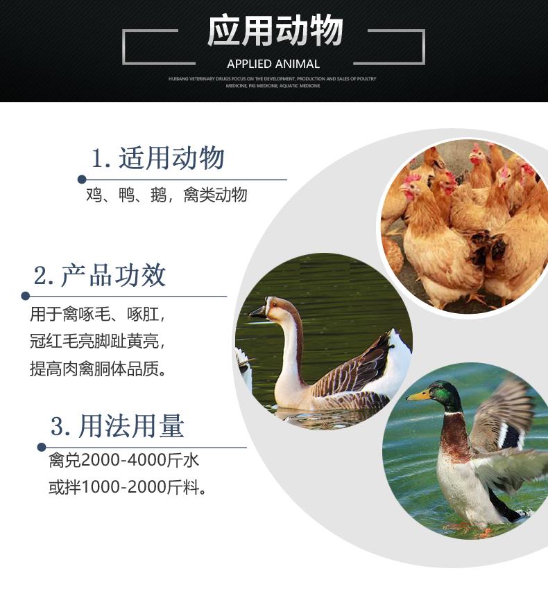 禽健素-产品详情页-适用动物.jpg