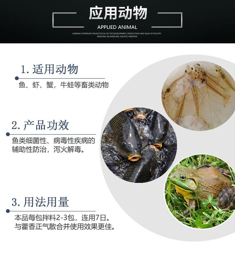 动物-详情页-黄连解毒散.jpg