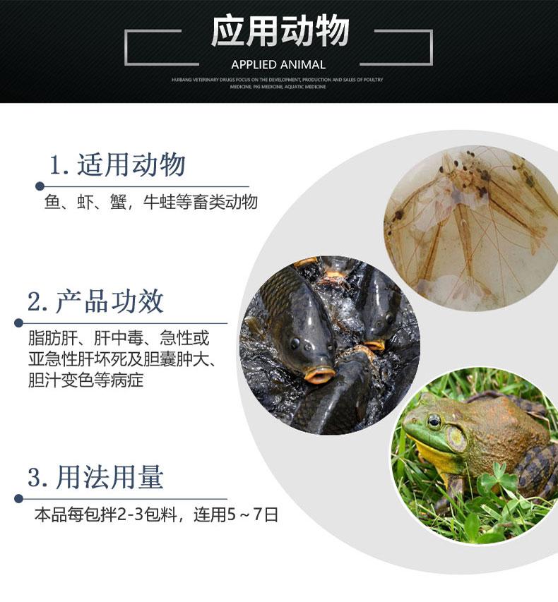 动物-详情页-龙胆泻肝散.jpg