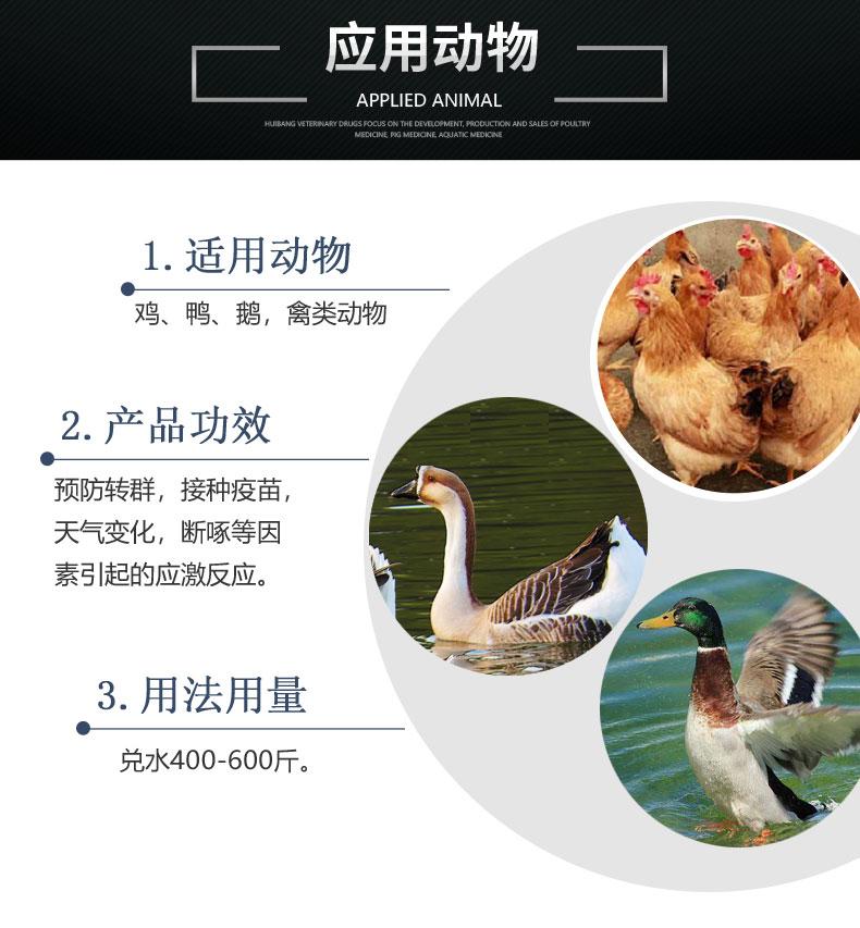 产品详情页-适用动物-劲能.jpg