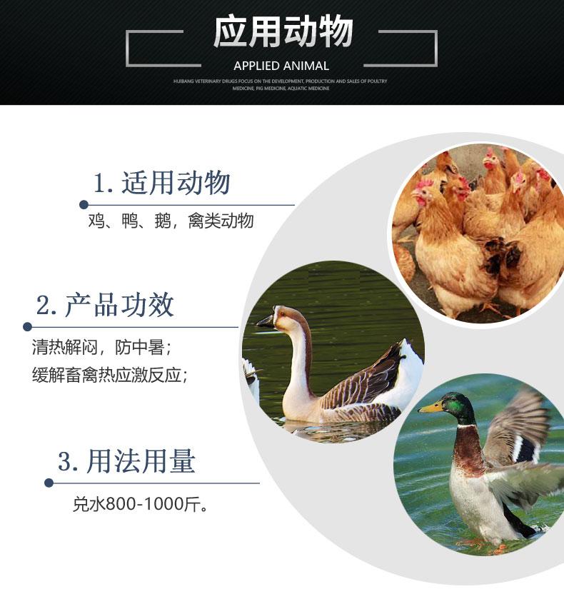 产品详情页-适用动物-解暑抗热灵.jpg