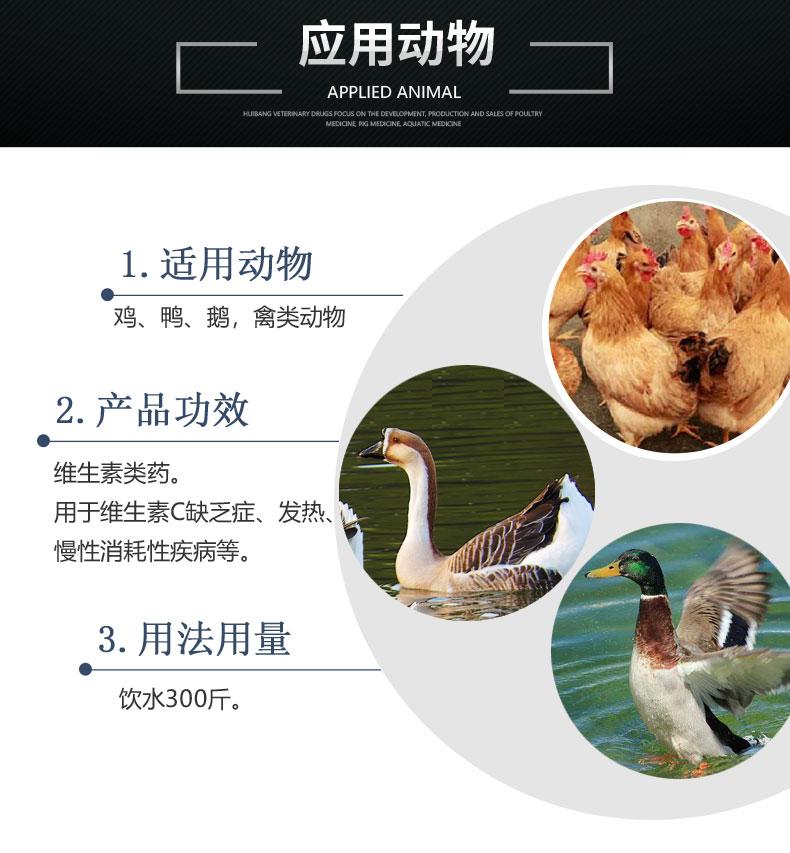产品详情页-适用动物-10%维生素C可溶性粉.jpg