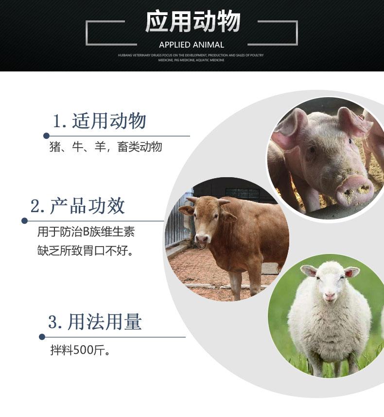 详情页-动物图-复合维生素B可溶性粉.jpg