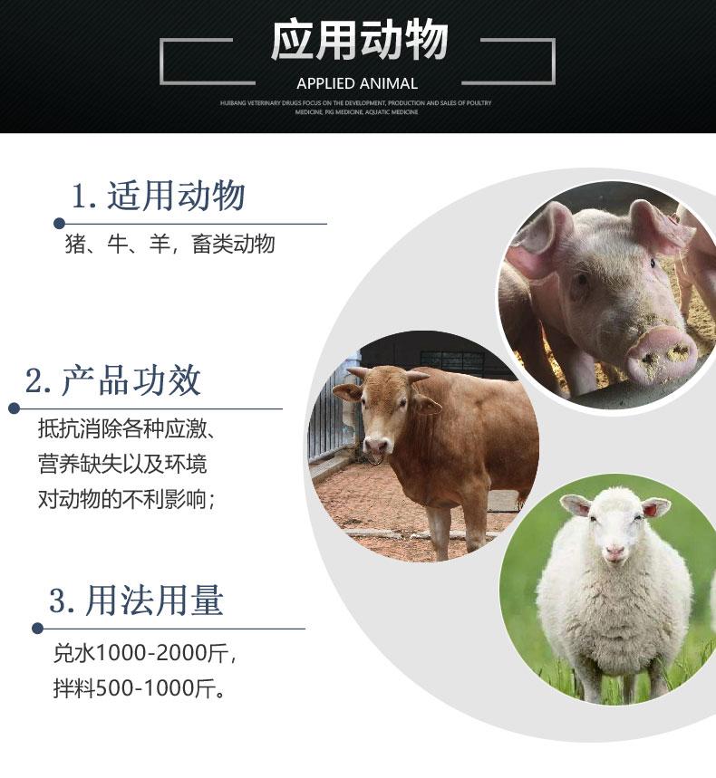 详情页-动物图-氨基黄芪康.jpg