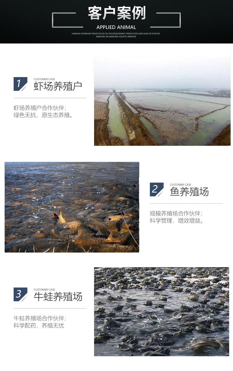 水产-客户案例_07.jpg
