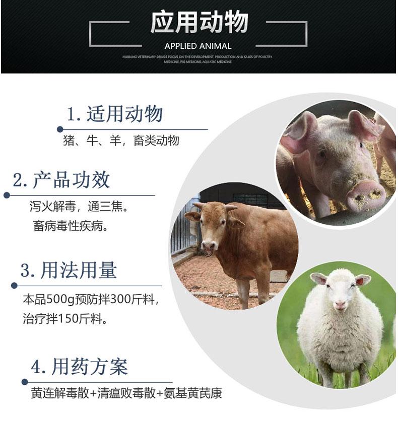黄连解毒散500g_04.jpg-动物图.jpg