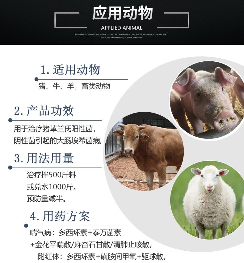 50%盐酸多西环素100g-猪用适用图.JPG