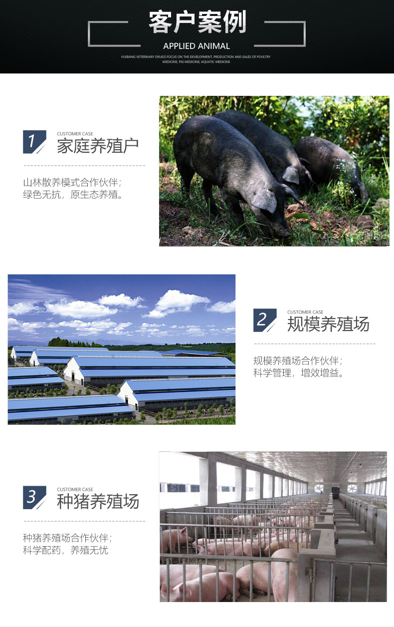 猪 客户案例_07.jpg