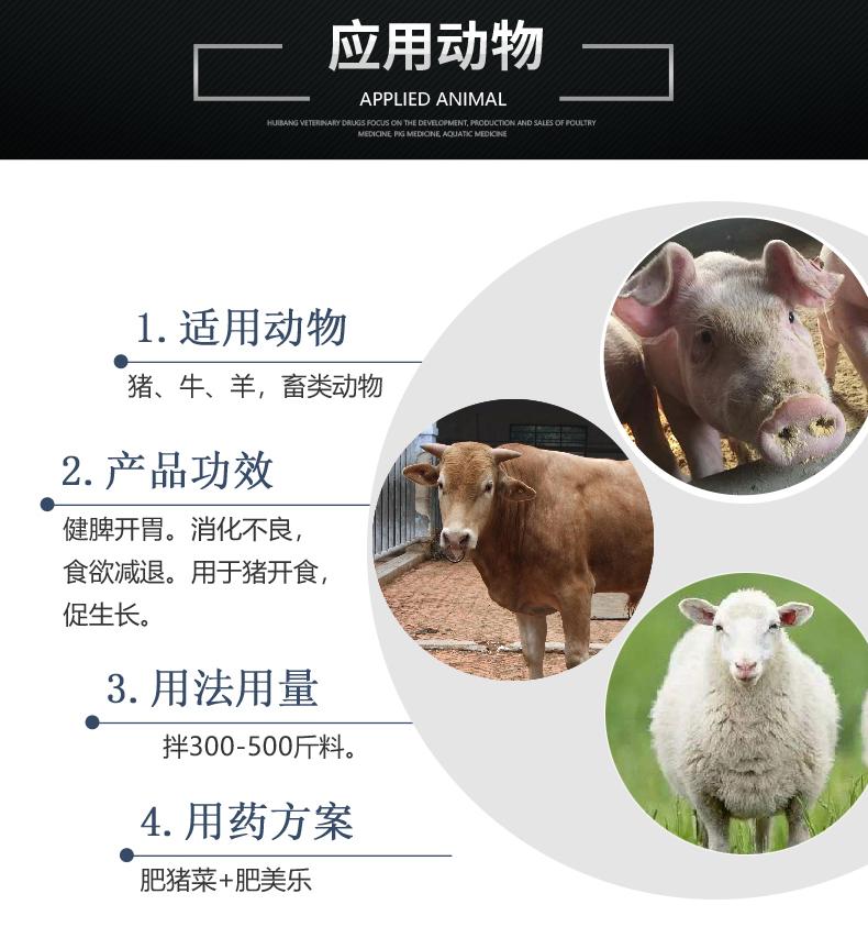 肥猪菜.jpg