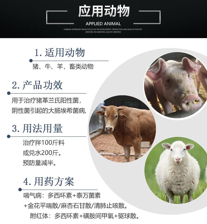 10%盐酸多西环素100g-猪用适用图.JPG