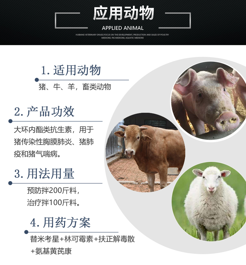 10%替米考星预混剂100g-猪用适用图.JPG