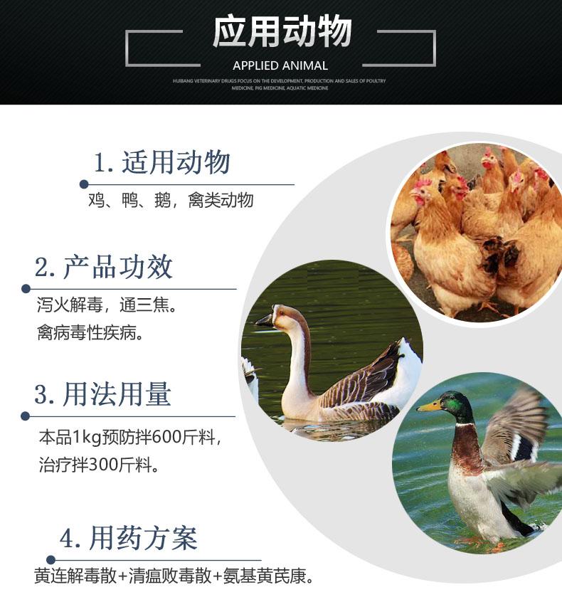 黄连解毒散-动物图.jpg