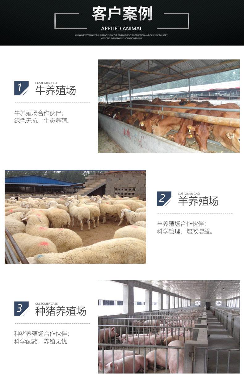 添加剂畜-客户案例_07.jpg